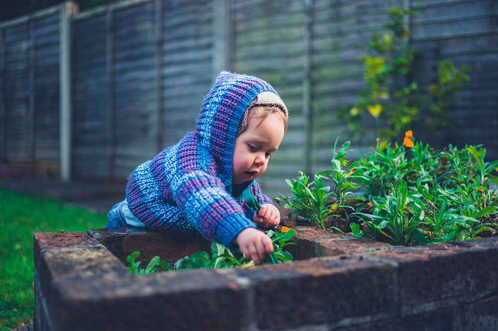 "little baby doing gardening at a preschool & Daycare Childcare Center serving Thornton, CO"" ""Cute little baby doing gardening at a preschool & Daycare Childcare Center serving Thornton, CO"